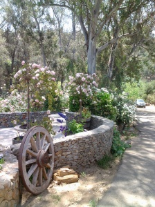 The drive and walkway up to the entrance, adorned with beautiful brickwork and abundance of roses.